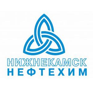 Нижнекамск Нефтехим