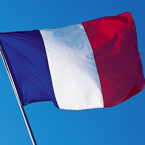 курсы французского